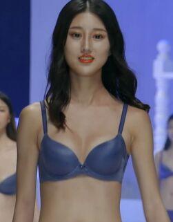 2018深圳内衣展中国内衣模特大赛2[mp4/230M]